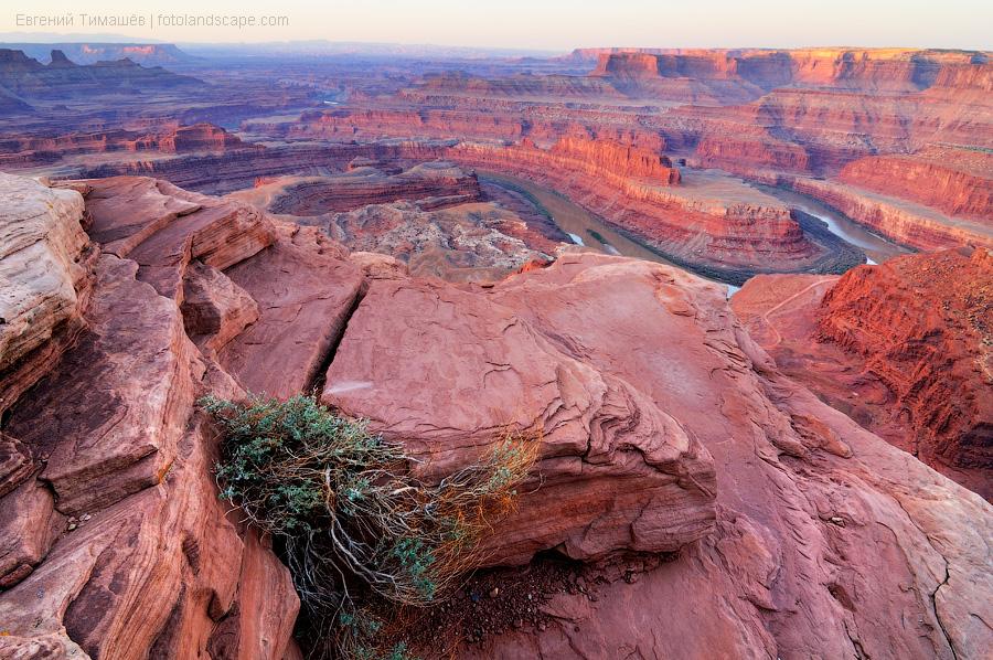 США, Аризона