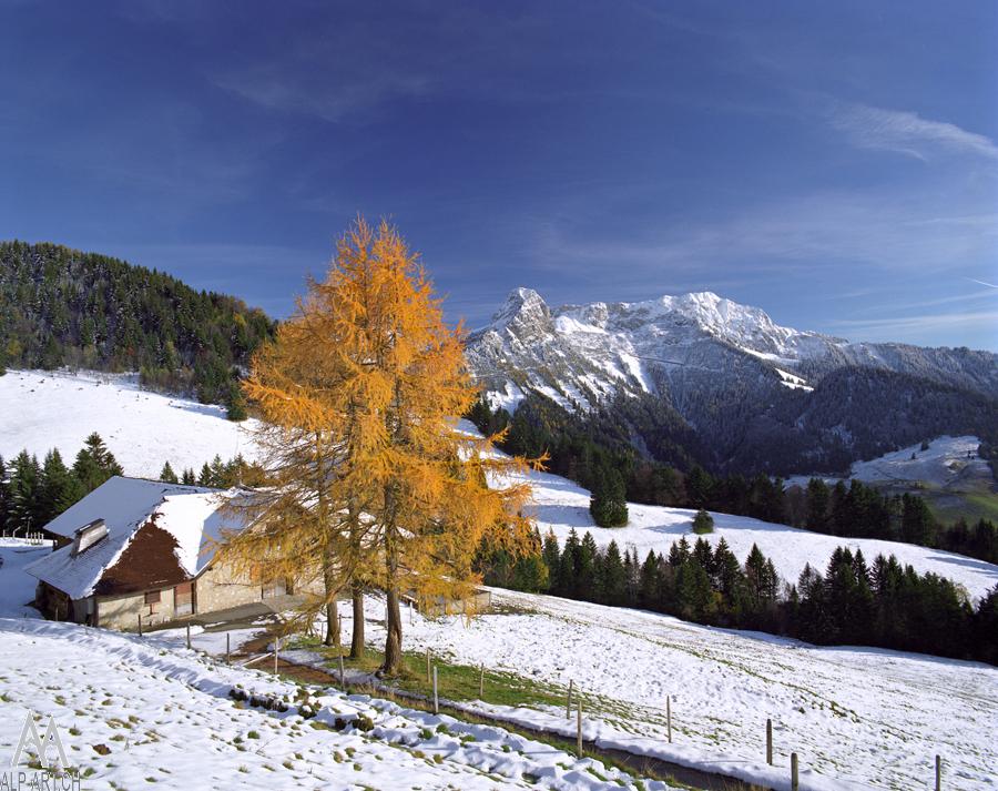 Дмитрий Кузнецов, Художественная фотосъёмка горных пейзажей